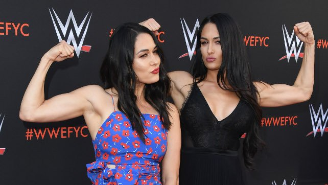 Corey Graves 'Smart' Fans To Not 'Throw Stones' After Brie Bella Incident